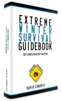 Extreme Winter Survival Guidebook – Defiance Against Nature discount coupon