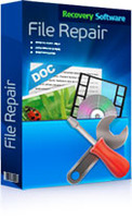 RS File Repair 1.1 discount coupon
