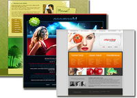 Web Template Packages ( All Packages [40] ) Screen shot