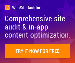 Website Auditing Software