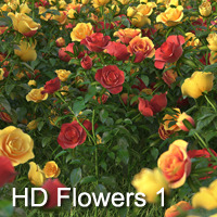 buy discount HD Flowers 1 for 3ds Max with coupon code