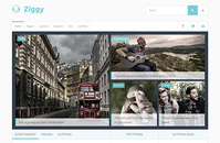 Ziggy – Joomla! Template discount coupon