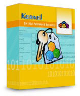 Kernel VBA Password Recovery – Corporate License discount coupon