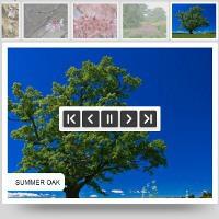 Visual Slideshow – VisualSlideShow.com: Awesome Web SlideShow! discount coupon