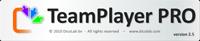 TeamPlayerPRO - 30 users
