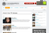 <p>If you don't want your site to have the same look as every other TV site you can choose from our premium templates. We are limiting the number of copies we sell of each template so your choosen theme won't get over used</p>