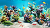 15% Discount Coupon code for Sim Aquarium 3 Deluxe