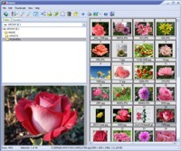 <p>Able Image Browser is a full featured image viewing solution which is fast, simple-to-use and inexpensive.</p>